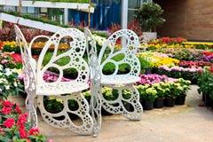 Vit stol i trädgården Fotografering för Bildbyråer
