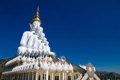 Vit stor Buddha med olika format i templet Thailand Arkivbilder