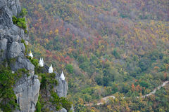 Vit stupa Arkivfoton
