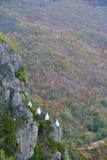 Vit stupa Royaltyfria Bilder