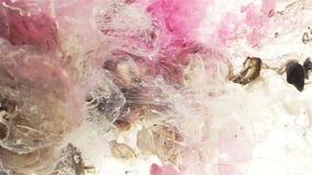 Vit, svart och rosa färgvätskefärg blandar under vatten arkivfilmer