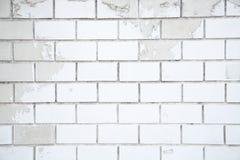 Vit tegelstenbakgrund, closeup av den gamla tegelstenväggen Arkivbilder
