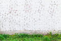 Vit tegelstenvägg och nytt grönt gräs Arkivbilder