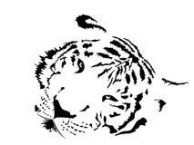 Vit tiger royaltyfri illustrationer