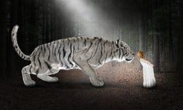 Vit tiger, fantasi, natur, kyss arkivbilder