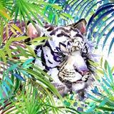 Vit tigerillustration Tropisk exotisk skog, vit tiger, gröna sidor, djurliv, vattenfärgillustration royaltyfri illustrationer