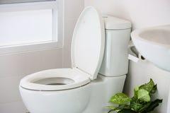 Vit toalett i det moderna hemmet, vit toalettbunke i lokalvårdrum som spolar flytande i toalett, privat toalett i modernt rum Royaltyfri Fotografi