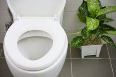 Vit toalett i det moderna hemmet, vit toalettbunke i lokalvårdrum som spolar flytande i toalett, privat toalett i modernt rum Royaltyfri Bild