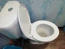 Vit toalettbunke i ett badrum royaltyfri bild