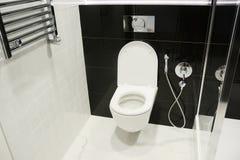 Vit toalettbunke med den thermostatic elektriska handdukst?ngen f?r badrum arkivfoto