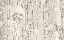 Vit träjulbakgrund för beiga och med stjärnor Arkivfoto