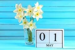 Vit träkalender med texten: Maj 1 Vita blommor av påskliljor på en blå trätabell Arbets- dag och vår Arkivfoto