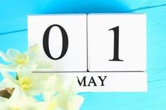 Vit träkalender med texten: Maj 1 Vita blommor av påskliljor på en blå trätabell Arbets- dag och vår Arkivbild