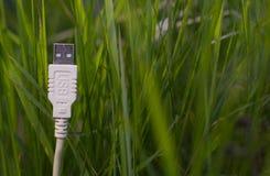 Vit USB kabel på gräs - grön teknologi arkivfoto