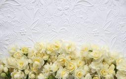Vit utföra i relief bakgrund med gula blommor Royaltyfri Bild