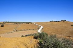 Vit väg och plogade fält av Andalucia royaltyfri bild