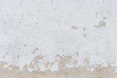 Vit väggbakgrund eller textur för stuckatur Royaltyfria Foton
