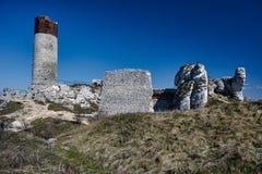 Vit vaggar och den fördärvade medeltida slotten Royaltyfri Bild