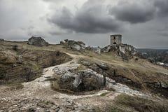 Vit vaggar och den fördärvade medeltida slotten Arkivbild