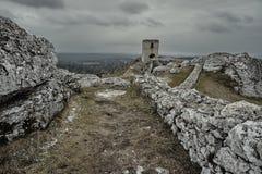 Vit vaggar och den fördärvade medeltida slotten Royaltyfri Fotografi