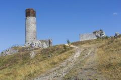 Vit vaggar och den fördärvade medeltida slotten i Olsztyn, Polen Royaltyfria Foton