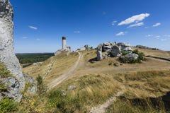 Vit vaggar och den fördärvade medeltida slotten i Olsztyn, Polen Royaltyfri Bild