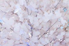 Vit vinterpappersbakgrund Fotografering för Bildbyråer