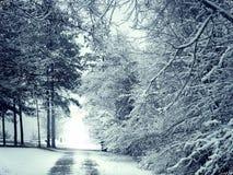 Vit vintersnöväg Royaltyfria Bilder
