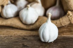 Vit vitlök med suddiga garlics i bakgrund för säckvävsäcktorkduk på den bruna trätabellen Arkivfoton