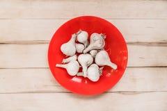 Vit vitlök på en röd platta Arkivfoto