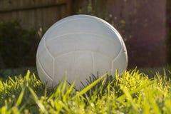 Vit volleyboll som sitter i gräset på en solig eftermiddag royaltyfri bild