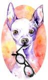 Vit vovve för vattenfärg med exponeringsglas i dess käkar Hund med purpurfärgade peaky öron tecknade kvinnor för framsidahandillu royaltyfri illustrationer