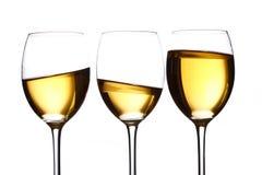 vit wine för exponeringsglas Royaltyfri Fotografi