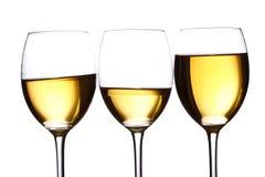 vit wine för exponeringsglas Royaltyfri Foto