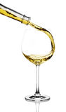 vit wine för färgstänk royaltyfri bild