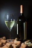 vit wine för flaskexponeringsglas fotografering för bildbyråer