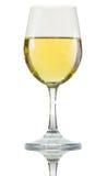 Vit wine i exponeringsglas Arkivbild