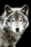 vit wolf vektor illustrationer