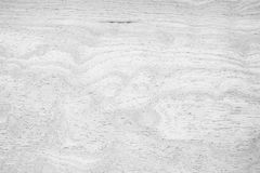 Vit wood textur Royaltyfria Foton
