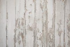 Vit wood texturbakgrund med naturliga modeller royaltyfria foton