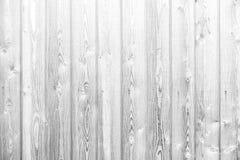 Vit wood texturmodellbakgrund Royaltyfri Foto