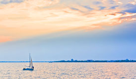 vit yacht arkivfoto