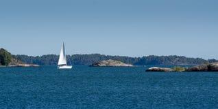 Vit yachtsegling på fjärden Arkivbild