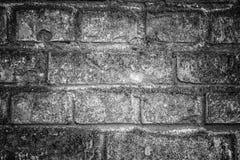 Vit yttersida för tegelstenvägg som bakgrund abstrakt texturwhite Royaltyfri Bild