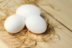 vita ägg Arkivbild