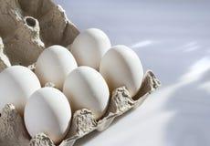 Vita ägg i en låda Arkivfoto