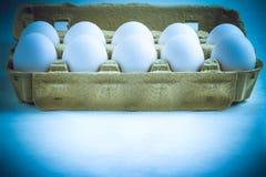 Vita ägg i en lådaask Arkivfoton