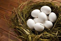 Vita ägg i redet Royaltyfri Fotografi