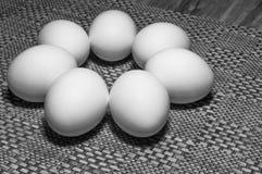 Vita ägg på en tabell arkivbild