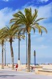 Vita alla spiaggia a Valencia Immagine Stock Libera da Diritti